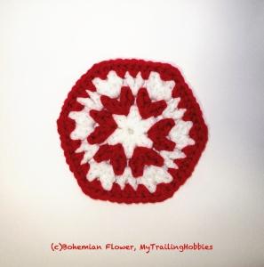 (c)bohemian flower, mytrailinghobbies